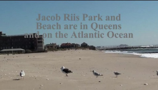 Jacob Riis Park in Rockaway Queens