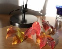 Autumn Leaves Slide Show